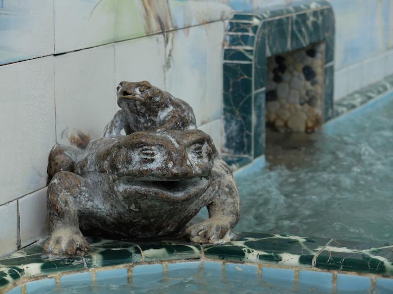 DSCF7270150505文京区月の湯見学会