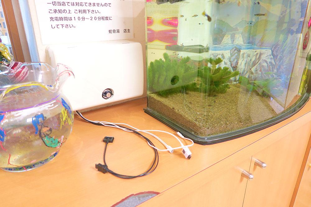 20151210台東区蛇骨湯